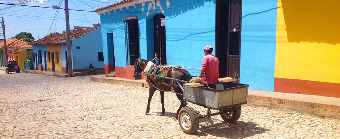 picture of a street in Cuba with a man driving a donkey cart